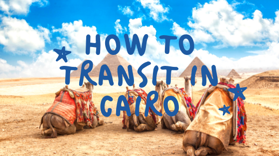 How to Transit in Cairo